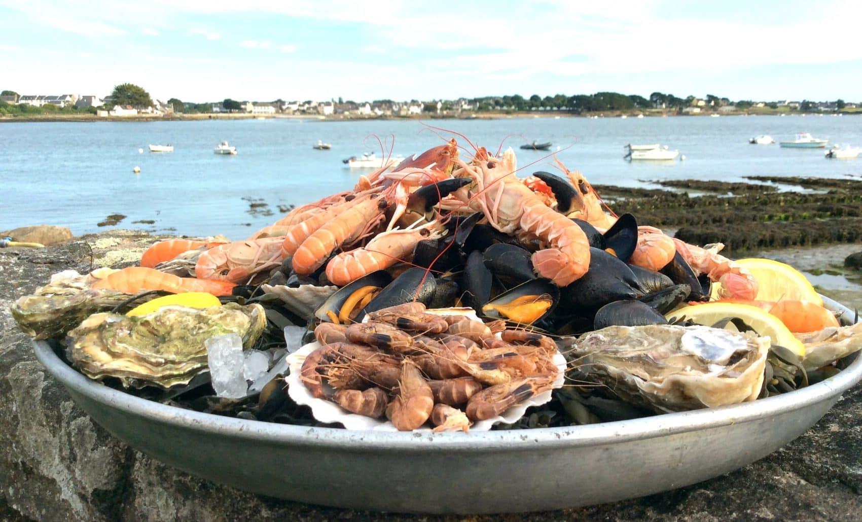 Dégustation de plateau de fruits de mer à St Guillaume dans le Morbihan